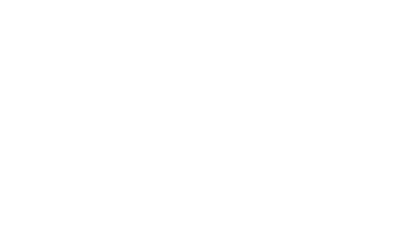 Consulting AG